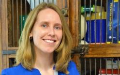 mr. Ilona Gerritsen-Webbers - NIVRE Register-expert personenschade