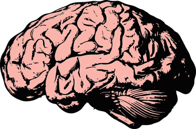 Letselschade hersenletsel